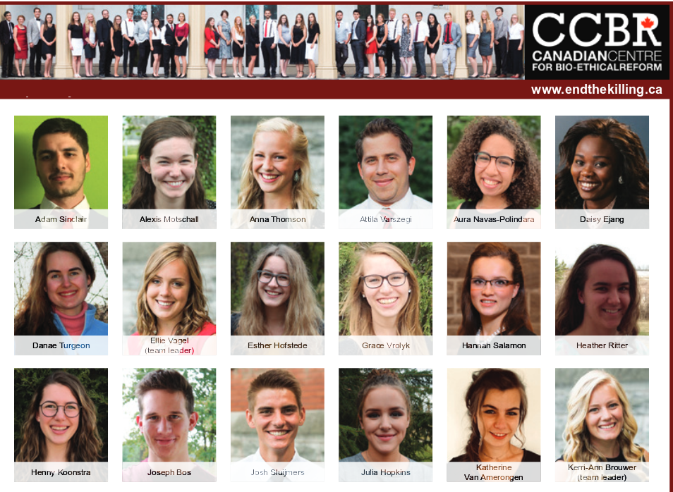 CCBR Newsletter