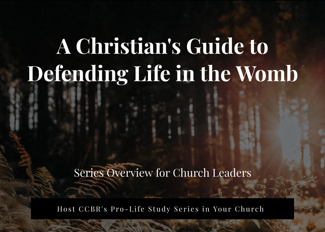 A Christian's Guide to Defending Life in the Womb
